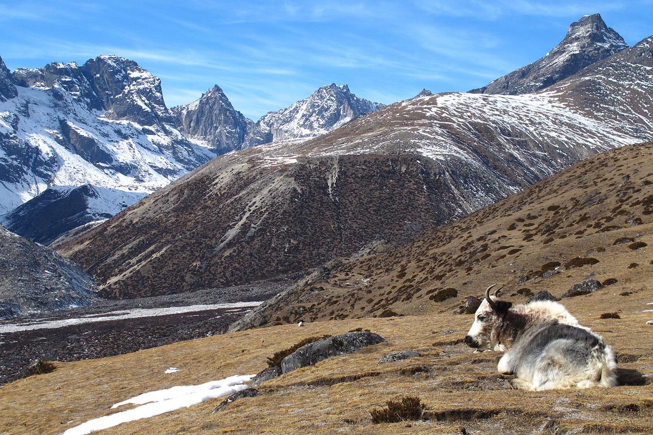 Dingboche - trek Everest - Himalaya