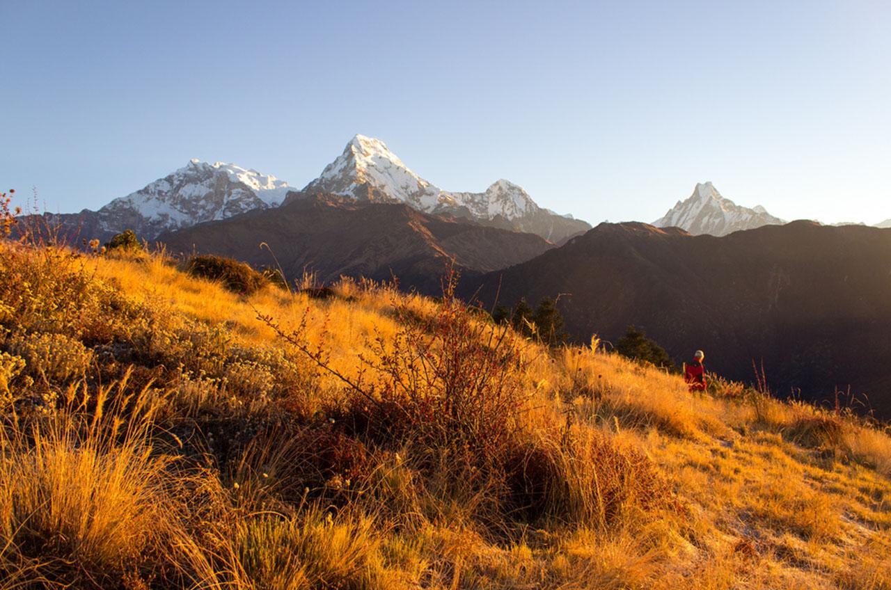 Trek Annupurna vue de Poon Hill - Trekking Népal