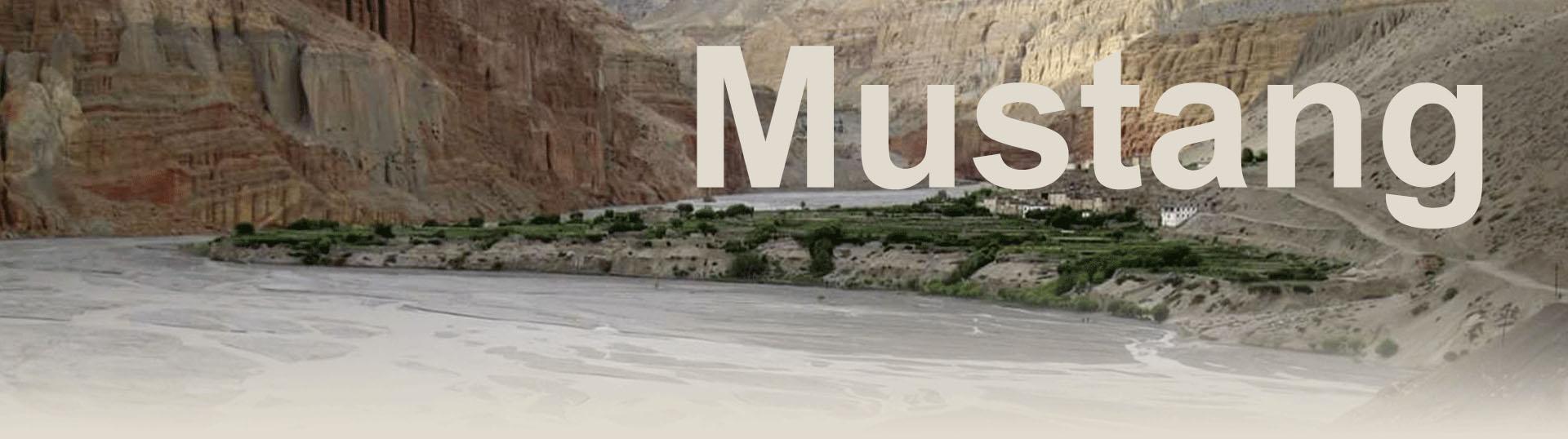 Trek Mustang - Tibet