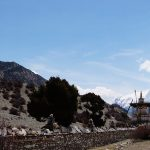 trek-thorong-la-col-annapurna-manang-nepal