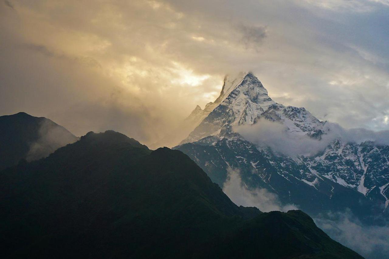 Mardi Himal - trekking au Népal