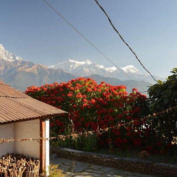 randonnee-photo-nepal-nagarkot-phokhara-dhampus-sarangkot