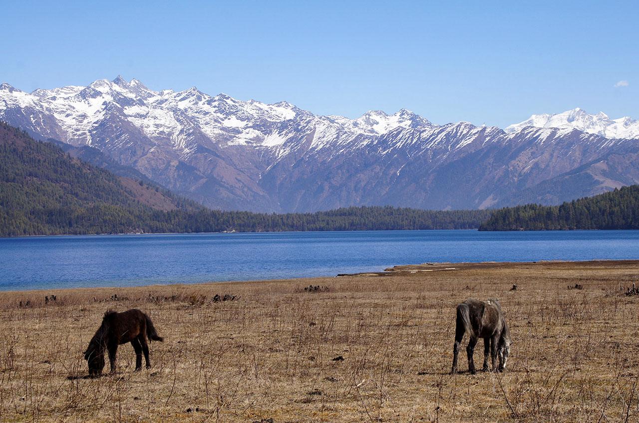 Dolpo - Lac de Rara