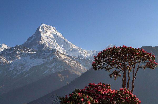 Poon Hill trek au Népal